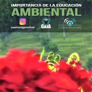 NUESTRO OXÍGENO Importancia de la educación ambiental - Ing. Gladis Cardona