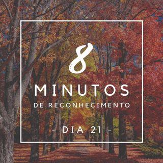 8 Minutos de Reconhecimento - Dia 21