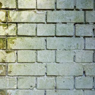 Le opache mura di casa