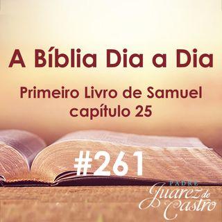 Curso Bíblico 261 - Primeiro Livro de Samuel 25 - Davi e Abigail - Padre Juarez de Castro