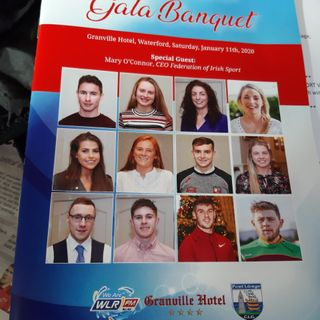 2019 WLR Granville Hotel GAA Award Winners, Various Monthly Winners