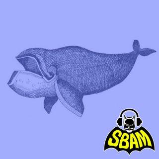 Ep. 20 | Hai finito di leggere Moby Dick?