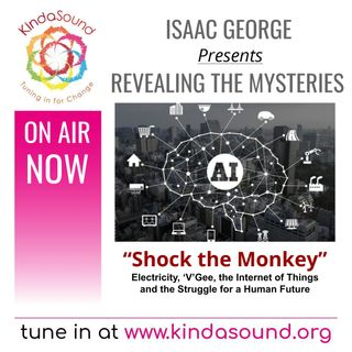 Shock the Monkey | Revealing the Mysteries with Isaac George