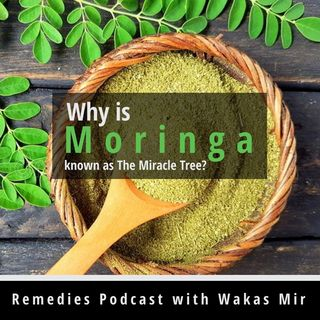Why is Moringa known as The Miracle Tree?