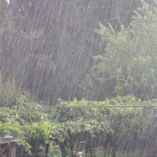 Piogge e temporali in montagna e pedemontana:  stato di attenzione fino a domenica sera