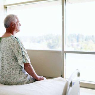 La ventana del hospital / Reflexiones