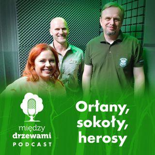 #35 Orłany, sokoły, herosy [goście: Dariusz Dyl, Mariusz Urban]