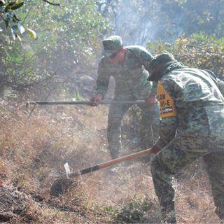 Organizaciones alertan sobre incendios más severos