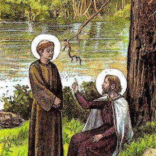 San Delfín, obispo