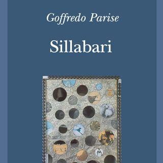 AMORE da Sillabario n.1 di Goffredo Parise letto da Angelo Callipo