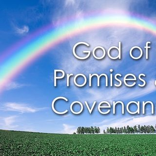 Established In His Covenant