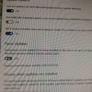 Preventing Automatic Windows Updates