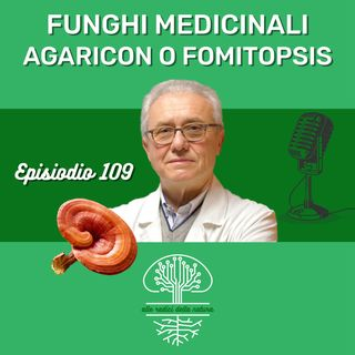 Funghi Medicinali: AGARICON O FOMITOPSIS