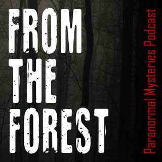 #193 | FTF Chapter 5: Alien Bigfoot, Dogman, Invisible Creatures & Taken by the Forest