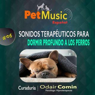#05 Sonidos Terapéuticos para Dormir Bien a los Perros