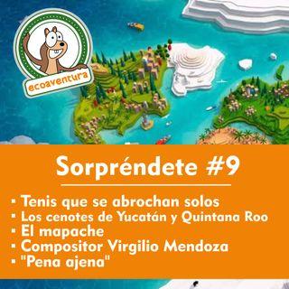 """T14 #9 Los tenis que se abrochan solos, los cenotes, el mapache, entrevista con el compositor Virgilio Mendoza y """"Pena ajena"""""""