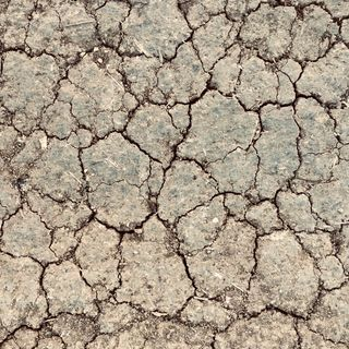 Where's the rain for the winter crops? A poor start to the southern season in Australia