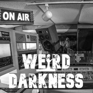 """THE NEVERGLADES MYSTERIES: ZOMBIE RADIO"" by David Farrow #WeirdDarkness"