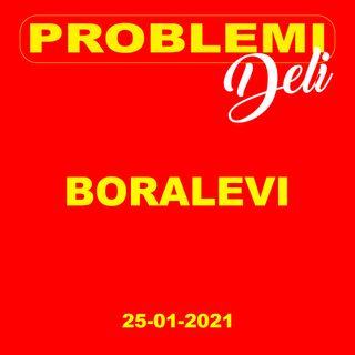 Boralevi