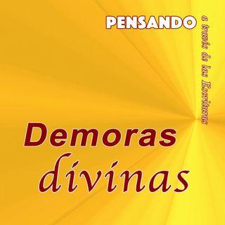 Demoras divinas (PAE N.8)
