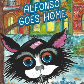 Alfonso goes home written by Jamie Talbott-Lamb 🐈🏙🏠