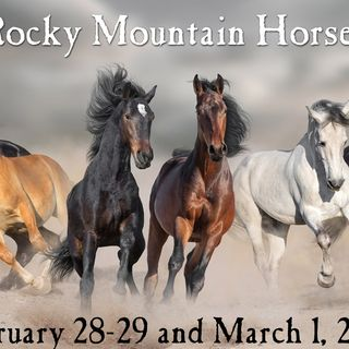 Countyfairgrounds presents Rocky Mountain Horse Expo