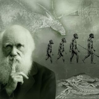 Evolution: Fact (Part I)