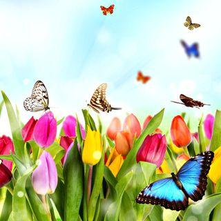 Filastrocche sulla primavera