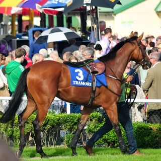 Hot Desk: The Business of Horse Racing