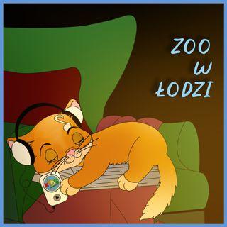 Zoo w Łodzi | bajka | ŁDZ - Wierszyki z Fabryki 🦒🐘🦊🐒🐺🦁