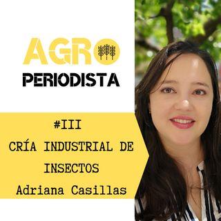 #3. Cria industrial de insectos, con Adriana Casillas