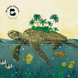 Ep. 16 Océanos, navegando por su sostenibilidad