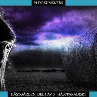 Del 1/5. Hästgården – Hästparadiset (R)