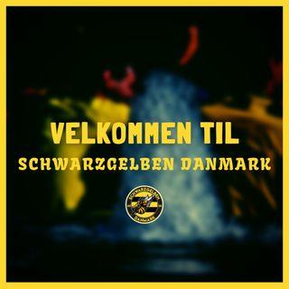 Velkommen til Schwarzgelben Danmark!⚫🟡