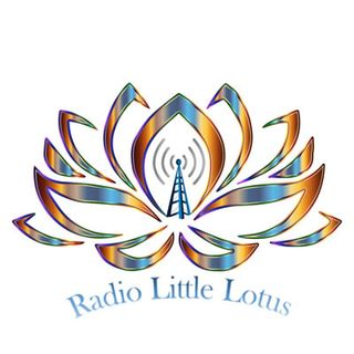 Introduzione a Radio Little Lotus