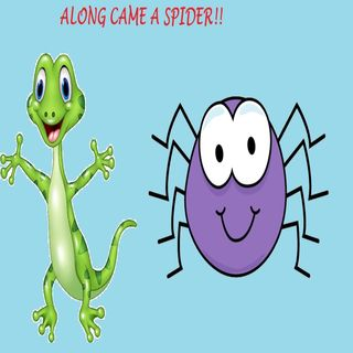 Along Came A Spider!!