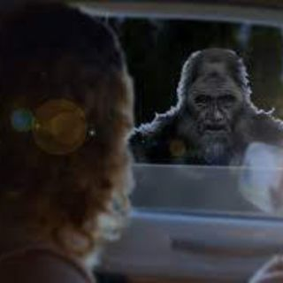 I saw IT through the car window. Shapeshifting Creatures & they were going to kill something!!