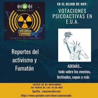 Radiosis Sonora Numero 14