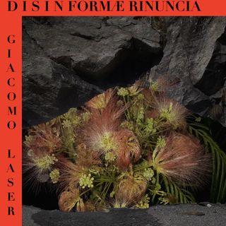 DISINFORMA E RINUNCIA (luccicare)