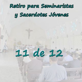 """Retiro Seminaristas 11 - Superando un sacerdocio de """"mínimos"""" y de la sola """"validez"""""""