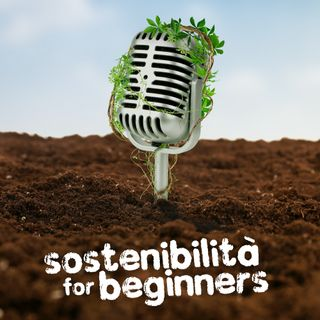 Sostenibilità for Beginners