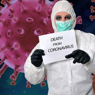 United States Coronavirus Deaths: 20,460