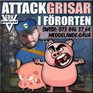 ATTACKGRISAR I FÖRORTEN