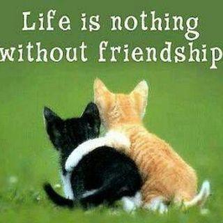 Filastrocche sull'amicizia