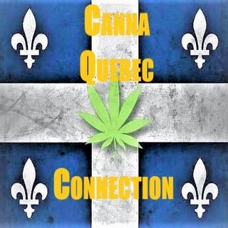 CannaQuebec -introduction on PaceRadio.net New Show Announcement