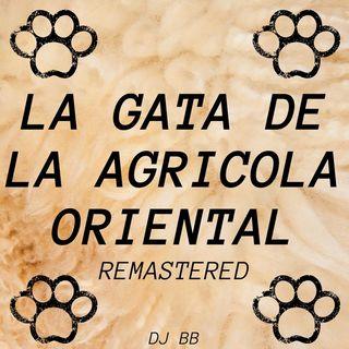 DJ Bull Blood - La Gata de la Agricola Oriental (Remastered) [NCS REALISED]