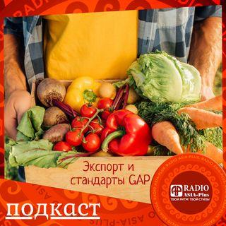 Экспорт сельхозпродукции Таджикистана. Как не потерять важную нишу