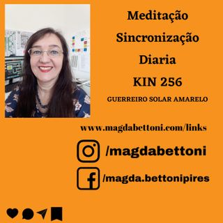 Meditação de Sincronização Diária kin 256