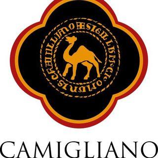 Camigliano - Gualtiero Ghezzi