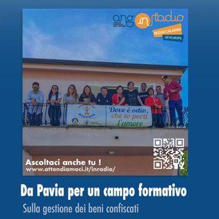 Ep.5 A Pavia, scambi culturali e confronti nei Collegi Universitari